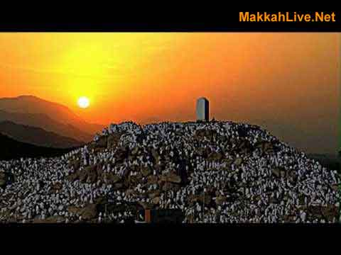 Hajj Tv from Arafat